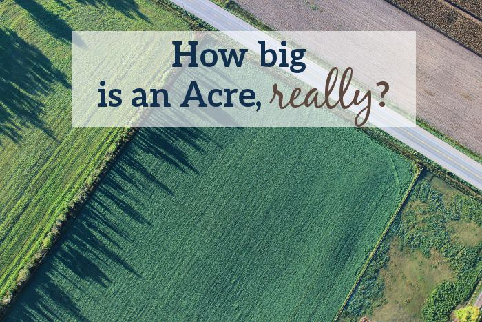 How big is an acre, really? - Land for Sale by Michigan ...